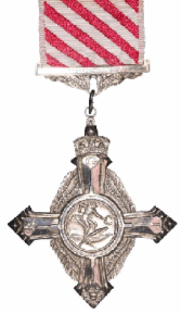 AirForceCross